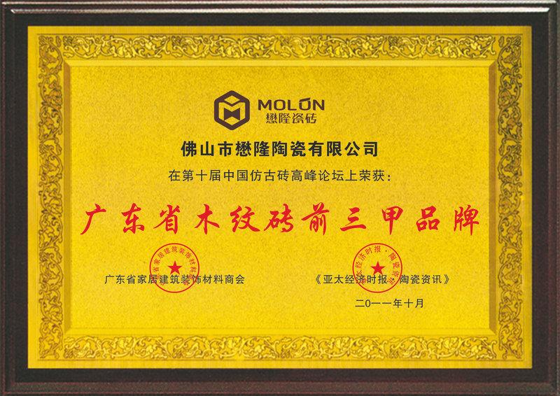 廣東省木紋磚前三甲品牌